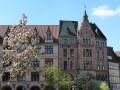 德国下萨克森风景